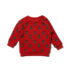 Little Green Radicals sweater Mountain Bears