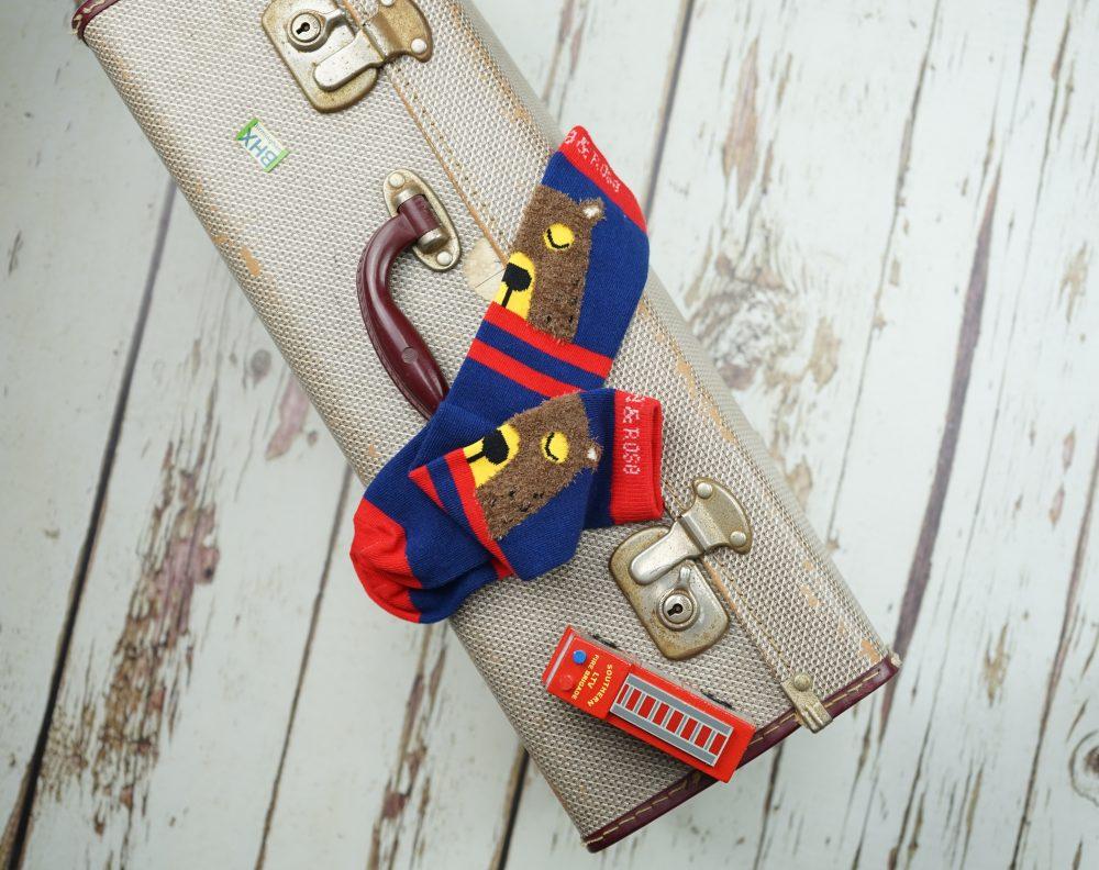 big-brown-bear-socks-e1550053954419
