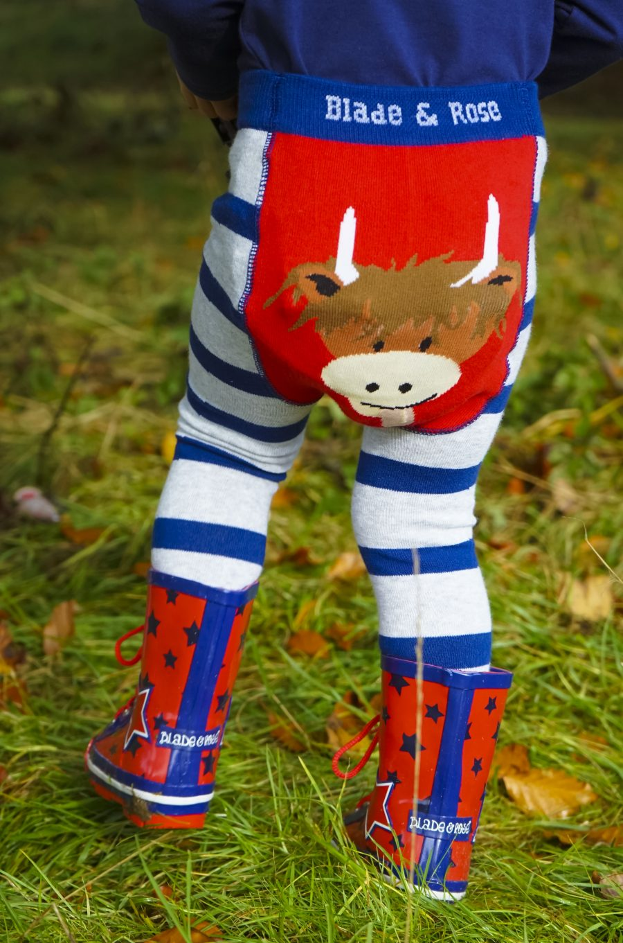 highland-cow-legging-bum-e1548348579996