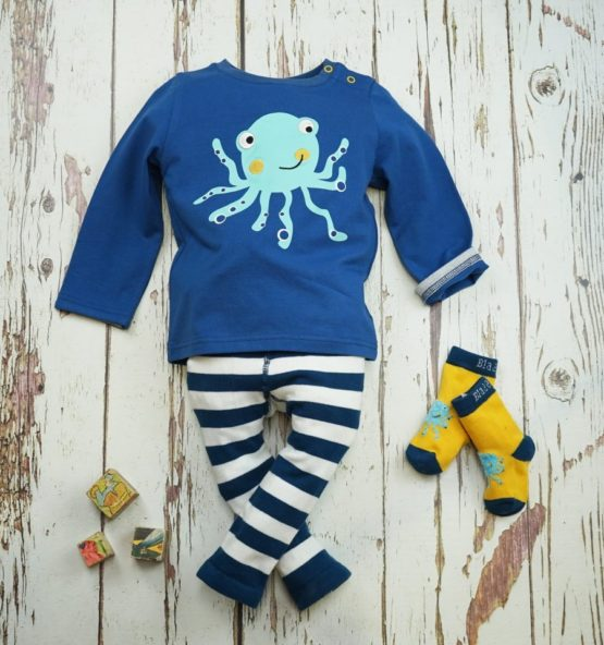 octopus-collection-front-all-e1549366518366