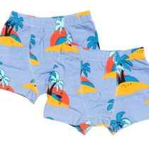 JNY 2-pack boxers Warm Wind