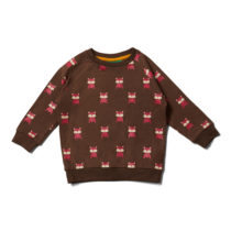 Little Green Radicals sweater Autumn Foxes